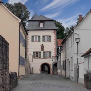 Sanierung Eingangstorturm Schloss Babenhausen